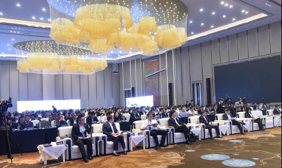 项目签约60亿,2020中国雷竞技官网新材料应用产业峰会在抚州隆重举行